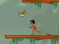 Джунгли танцуют буги-вуги