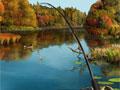 Идите на рыблку